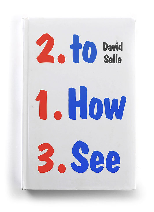 """Дэвид Салле """"How to See"""""""
