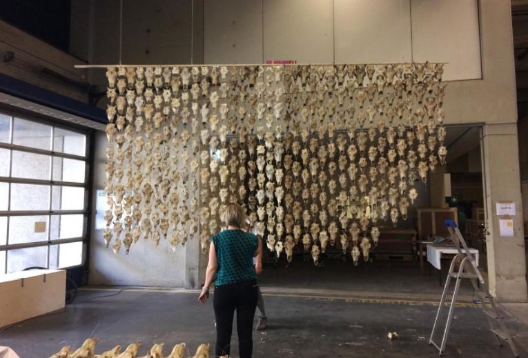 Взгляд на Máret Ánne Sara, Pile o' Sápmi 2017, во время установки инсталляции. Фото Кэндис Хопкинс.