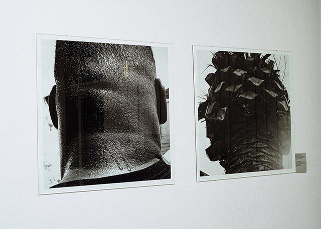 Сергій Братков, фото з серії «В Біблії про це не написано ... В Біблії багато про що не написано», диптих, ч/б фотодрук, 75 х 75 см., 2019