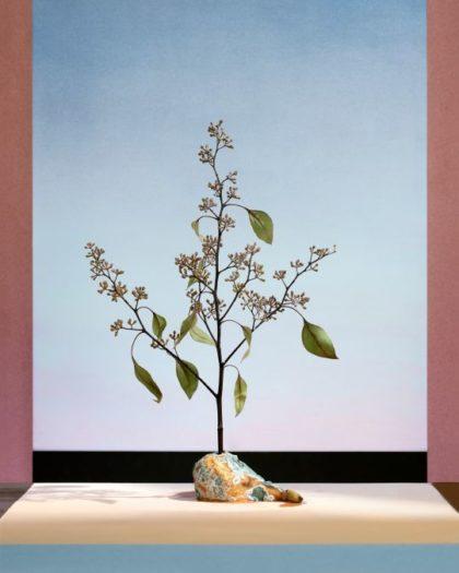 Алекс Юдзон, «Груша с деревом»